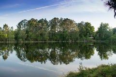 Вода и деревья отражения ландшафта лета природы стоковые фотографии rf