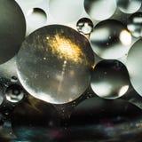 Вода и масло, красивая предпосылка конспекта цвета основанная на белых и серых кругах и овалах, абстракции макроса Стоковые Фото
