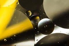 Вода и масло, красивая предпосылка конспекта цвета основанная на белых желтых и серых кругах и овалах, абстракции макроса Стоковое фото RF