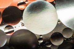 Вода и масло, красивая предпосылка конспекта цвета основанная на белых и серых кругах и овалах, абстракции макроса Стоковая Фотография RF