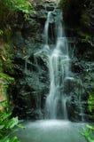 вода каменной стены падения Стоковое Изображение