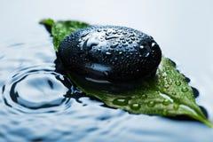 вода камня спы листьев Стоковая Фотография