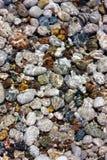 вода камушков Стоковое Изображение RF