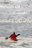 вода каня одичалая Стоковое Фото