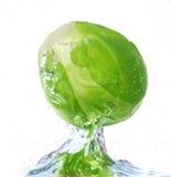 вода капусты Стоковые Изображения