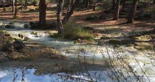 Вода Кристл в реке горы леса Глубоко в горах сток-видео