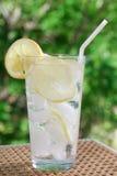 вода лимона сверкная Стоковые Изображения
