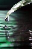 вода листьев падения Стоковое фото RF