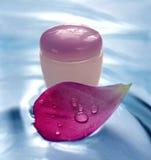вода листьев creme розовая Стоковое Изображение RF