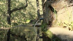 Вода лить в фонтане камня горы сток-видео