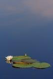 вода неба Стоковые Изображения RF