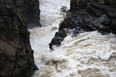 вода падения свирепая стоковое изображение rf