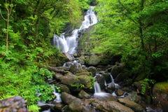 вода падения Стоковые Фото