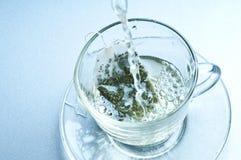 вода пакетика чая чашки горячая Стоковая Фотография RF