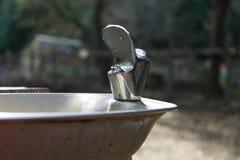 Вода питья в парке стоковые фотографии rf