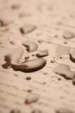 вода пола деревянная Стоковые Изображения