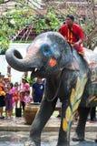 вода потехи празднества слона Стоковые Фотографии RF