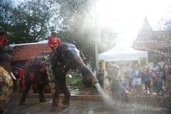 вода потехи празднества слона Стоковое Фото