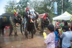 вода потехи празднества слона Стоковые Фото