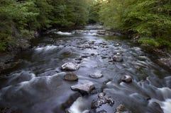 вода потока Стоковые Изображения