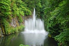 вода пруда фонтана Стоковые Изображения RF