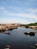 вода пруда Стоковые Изображения RF