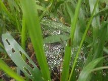 вода пузырей ванны предпосылки голубая стоковое фото rf
