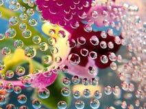 вода пузырей Стоковые Изображения