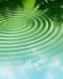 вода пульсации пущи Стоковое Изображение