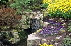вода сада Стоковое Изображение RF