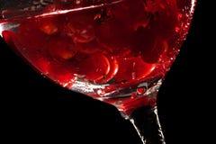вода свежих фруктов Стоковое Изображение RF