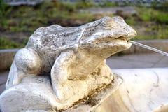 Вода скульптуры лягушки лить, деталь фонтана Стоковые Фотографии RF