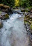 Вода спешит через заводь Brice в Орегоне Стоковые Изображения RF