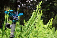 вода спринклера установки сада стоковые фотографии rf