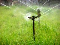 вода спринклера Стоковые Изображения RF