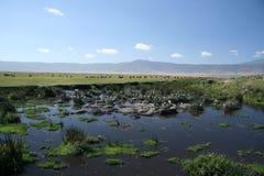 вода Танзании ngorongoro отверстия кратера Африки Стоковые Изображения