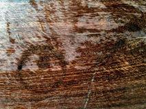 Вода трассировки на древесине Стоковые Изображения RF