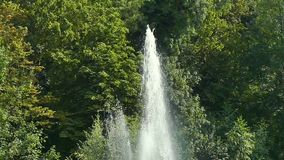 Вода фонтана впрыскивает фонтан парка сток-видео