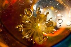 вода цветка Стоковое фото RF