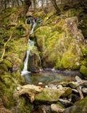 вода штока ghyll усилия падения Стоковая Фотография