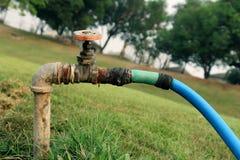Вода Faucet от клапана воды faucet, запорной заслонки в зеленом саде стоковые фотографии rf