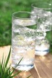 вода icecubes минеральная сверкная Стоковые Изображения