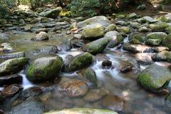вода scape Стоковые Изображения