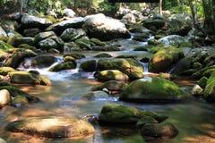 вода scape Стоковая Фотография RF