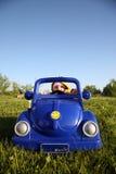 водитель нелицензированный Стоковое Фото