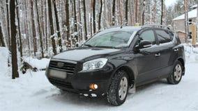 Водитель продолжается управлять в лесе зимы после останавливать сток-видео
