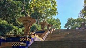 Водить лестницы Стоковые Фотографии RF