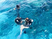 2 водолаза в черных костюмах скубы, человеке и женщине с бутылками кислорода тонут под прозрачное открытое море в море, th стоковые изображения rf
