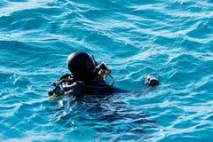 Водолазы на Красном Море Стоковое Изображение RF