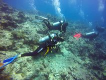Водолаз АКВАЛАНГА женщины смотря Camer подводное стоковые фото